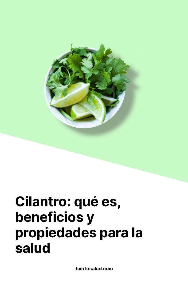 Cilantro: qué es, beneficios y propiedades para la salud