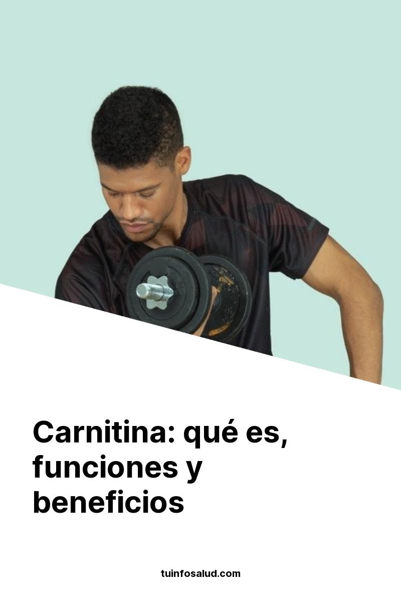 Carnitina: qué es, funciones y beneficios
